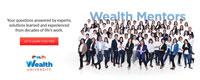 Wealthu web px